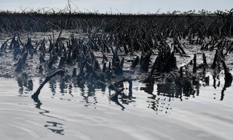 Niger oil spill